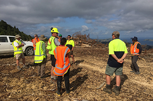 tile site visit forestry earthworks whangapoua