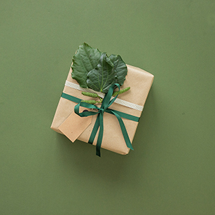 green gift 4